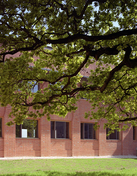 Grassed courtyard and oak tree.10/20