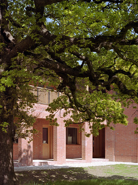 Grassed courtyard and oak tree.11/20