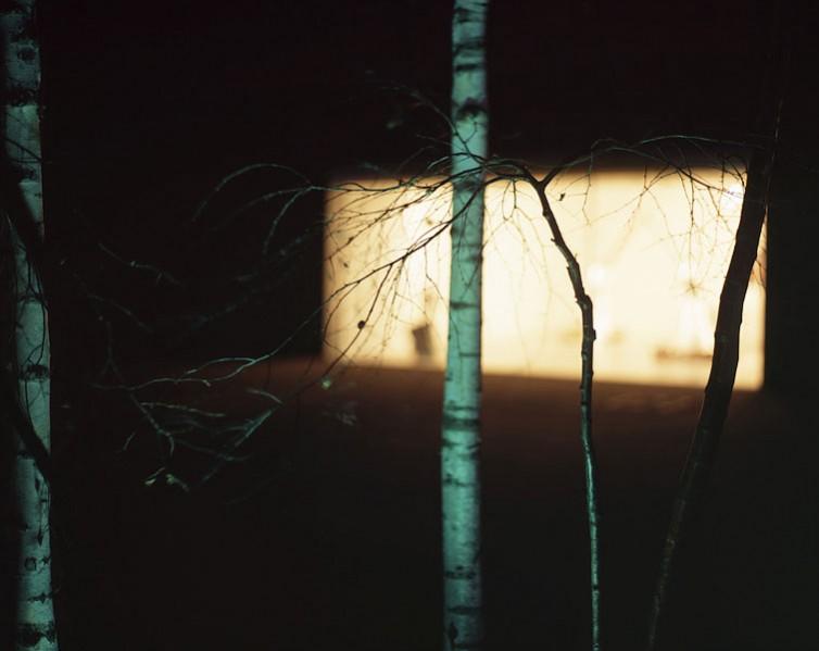 Urban Trees 04.14/36