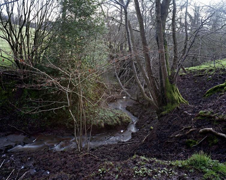 Penishaplwydd - stream near Abergavenny.32/36