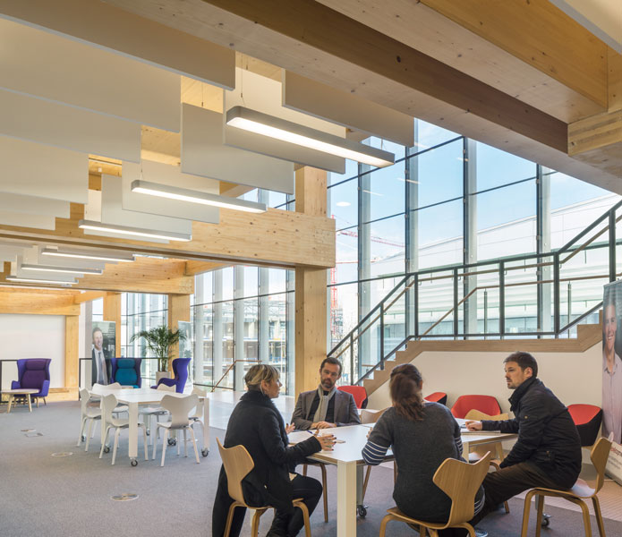 Timber columns against glazing in meeting areas. 10 of 10.