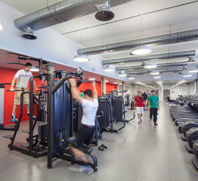 Photograph of the fitness gym. 11 of 20