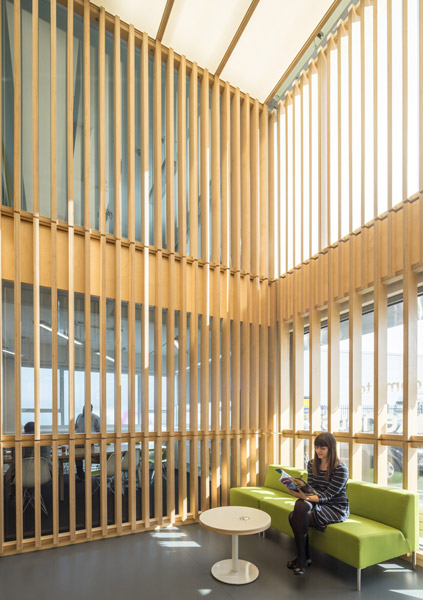 Office reception, featuring vertical timber louvres, 01 of 08