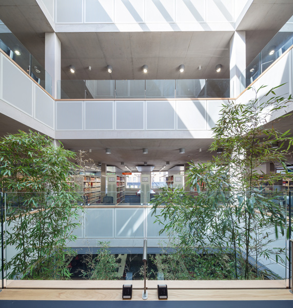 Interior photographer, planting in the light-filled atrium, 07 of 07