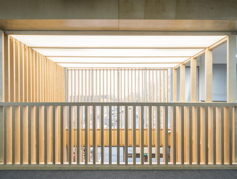 Photo of the architectural timber design that is defining the space, 08 of 08