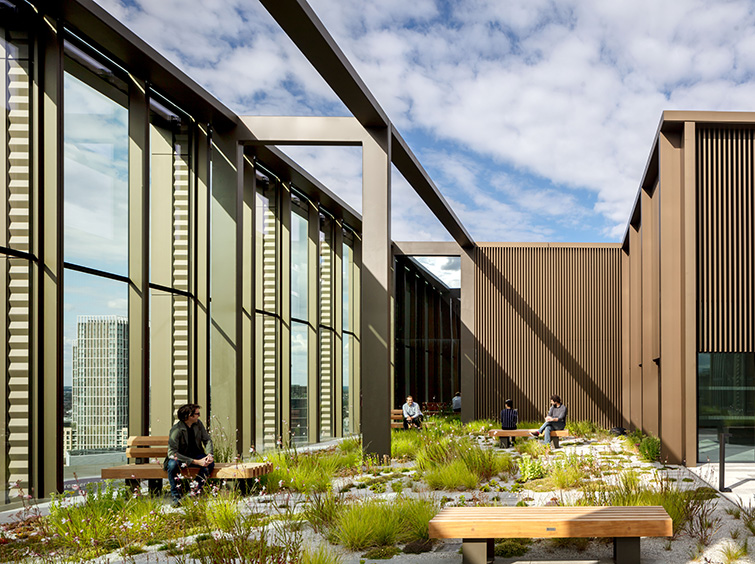 Exterior roof garden photo, Simpsonhaugh-Architects, London 12 of 40