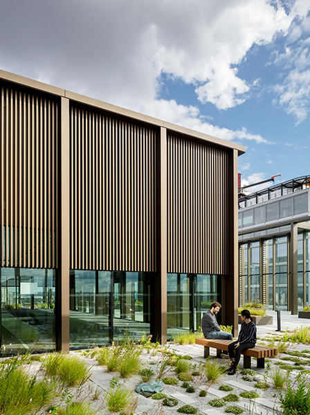 Exterior photograph showing planting and seating areas, 03 of 04.