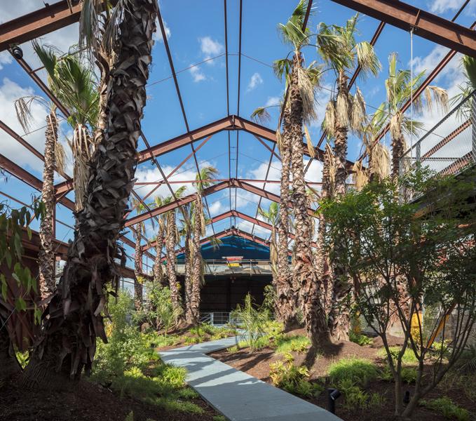 Tropical landscape architecture, 08 of 20.