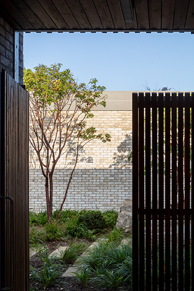 Exterior image showing views through to the planted courtyards, 14 of 21.