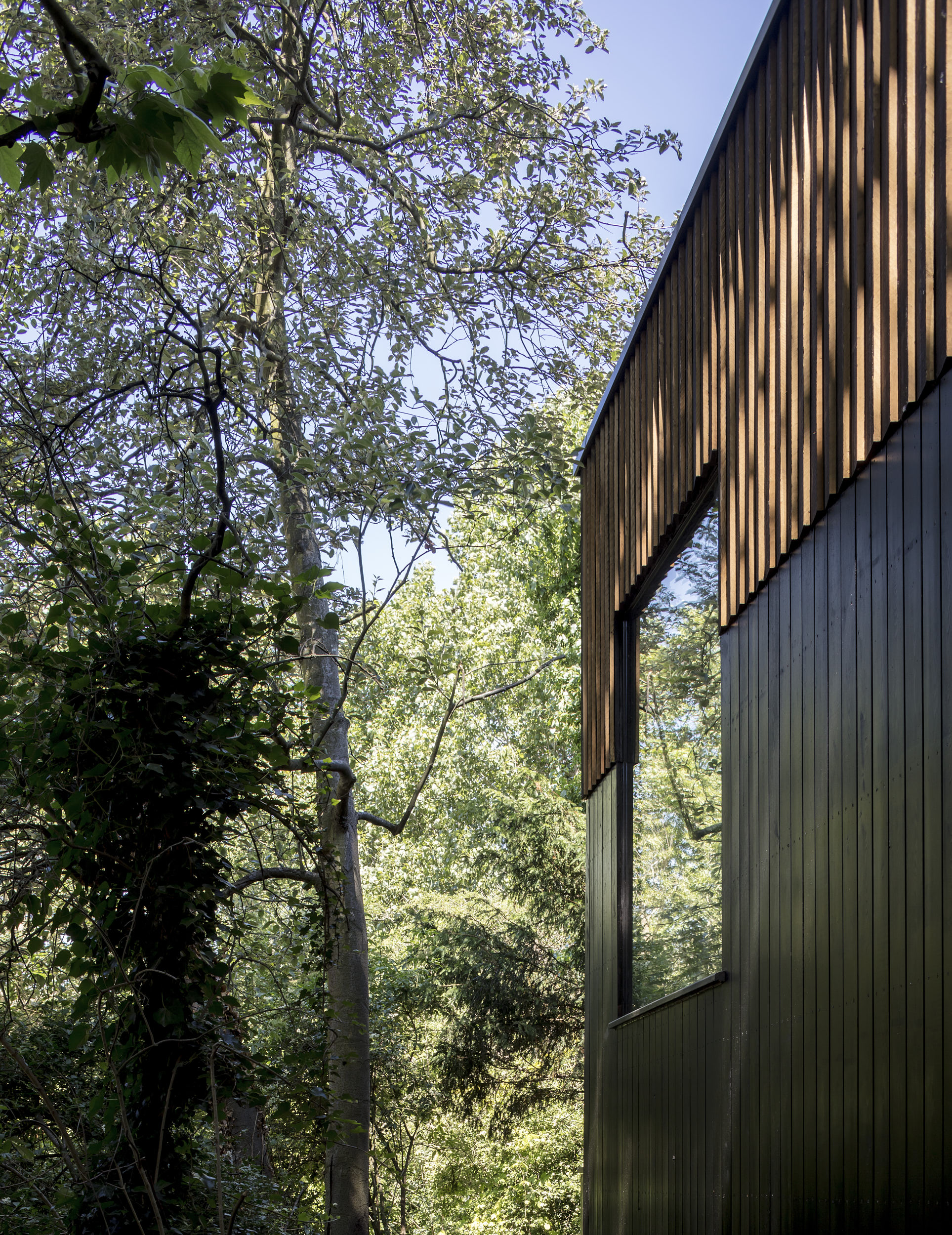 Exterior photograph showing the timber cladding.